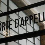 Corte D`Appello Civile Palermo – Sentenza n. 1692 del 22 agosto 2019